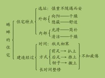《蟋蟀的住宅》结构分析